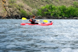 Sea_kayak_hawaii